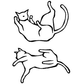 falling cat(猫のイラスト)